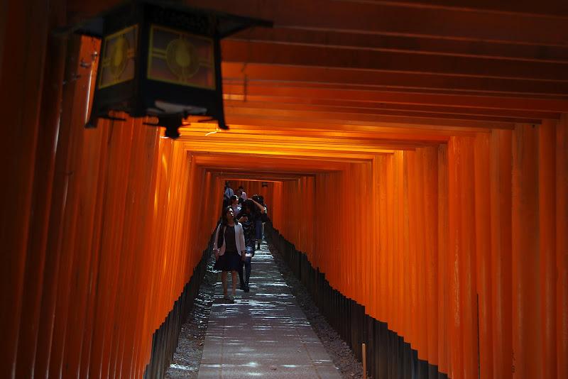 Qué ver en Kioto. Templo Fushimi Inari