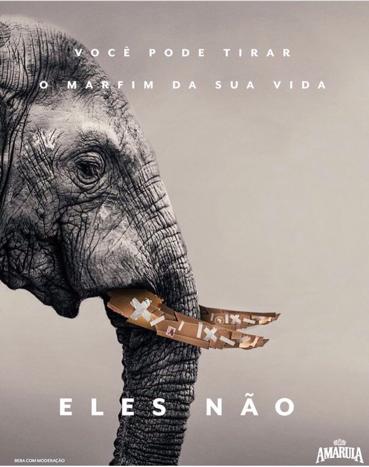 coracao de elefante