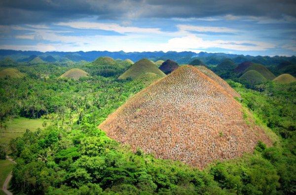 Шоколадные холмы на острове Бохоль