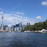 toronto in glory in Toronto, Ontario, Canada