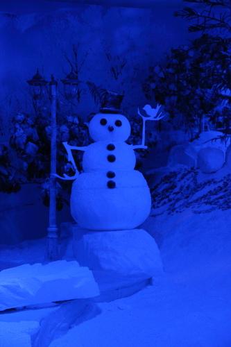Orang salji