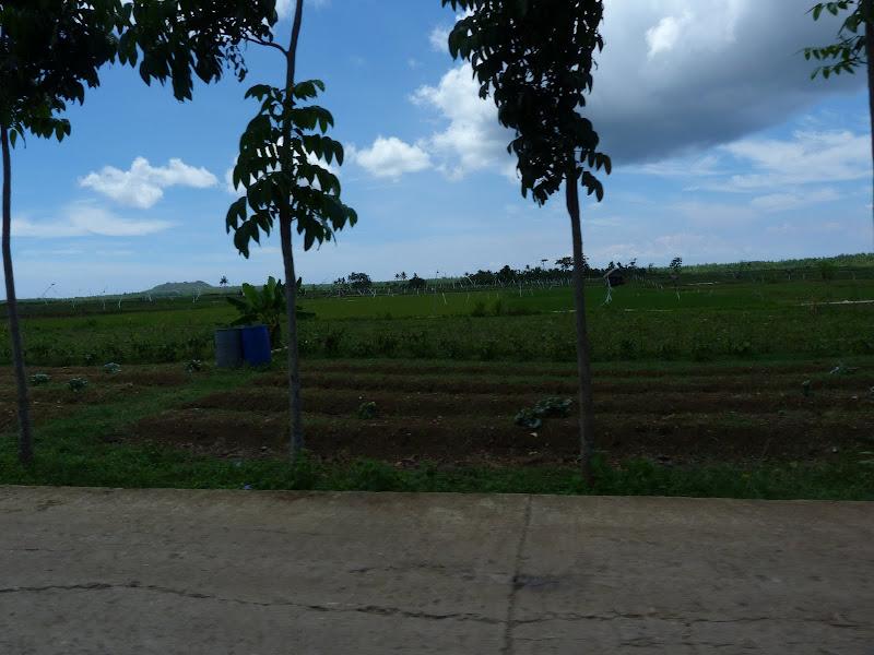 Camotes et Poron island - philippines1%2B904.JPG