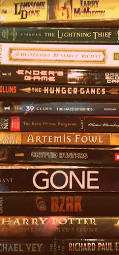 15 Series Books Boys Will Love To Read