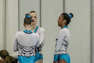 Han Balk Fantastic Gymnastics 2015-2636.jpg