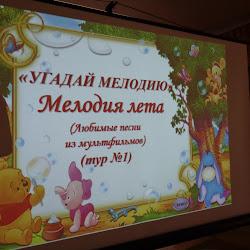 """""""Мелодия лета"""" в Новосельском СДК"""