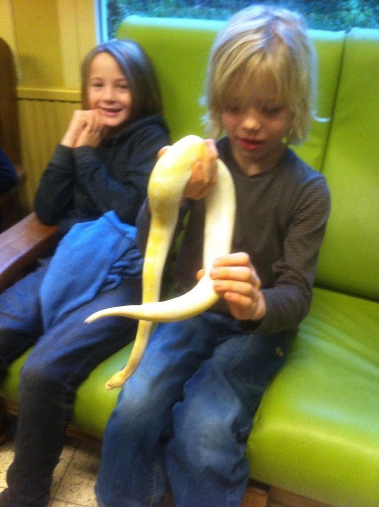 Slangen op bezoek bij de Kikkers - IMG_9209.JPG