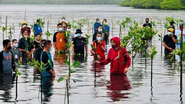 Presiden Joko Widodo Nyemplung saat melakukan penanaman mangrove bersama masyarakat di Batam