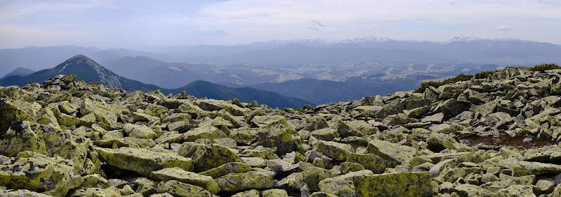 карпаты горганы панорама