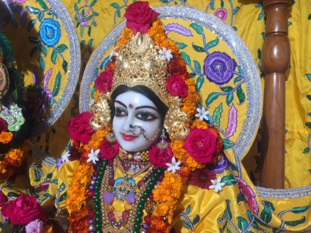 ISKCON Raipur Deity Darshan 03 jan 2017 (2)