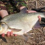 20140323_Fishing_Netishyn_030.jpg