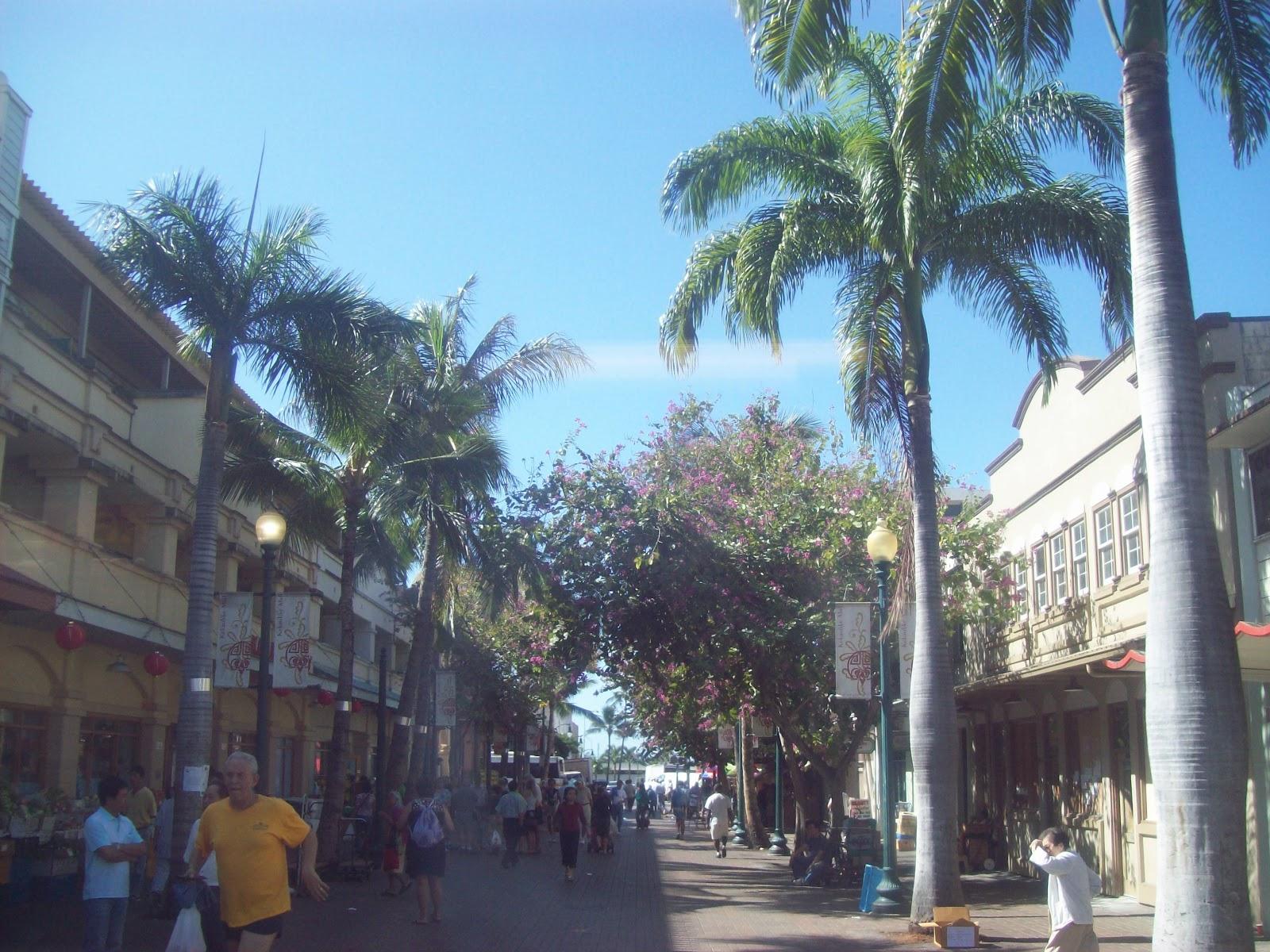Hawaii Day 3 - 100_7031.JPG