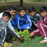 Gurukul Green Revolution (39).jpg