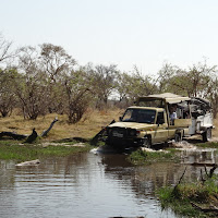 Crossing a river on the way to Moremi
