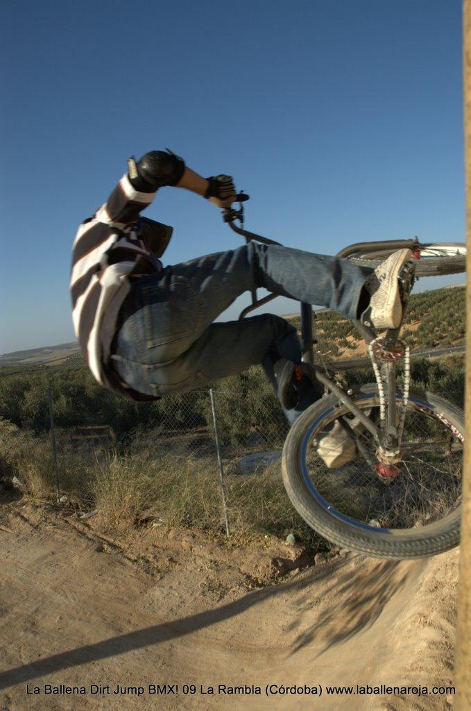 Ballena Dirt Jump BMX 2009 - BMX_09_0095.jpg