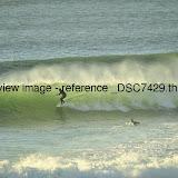 _DSC7429.thumb.jpg