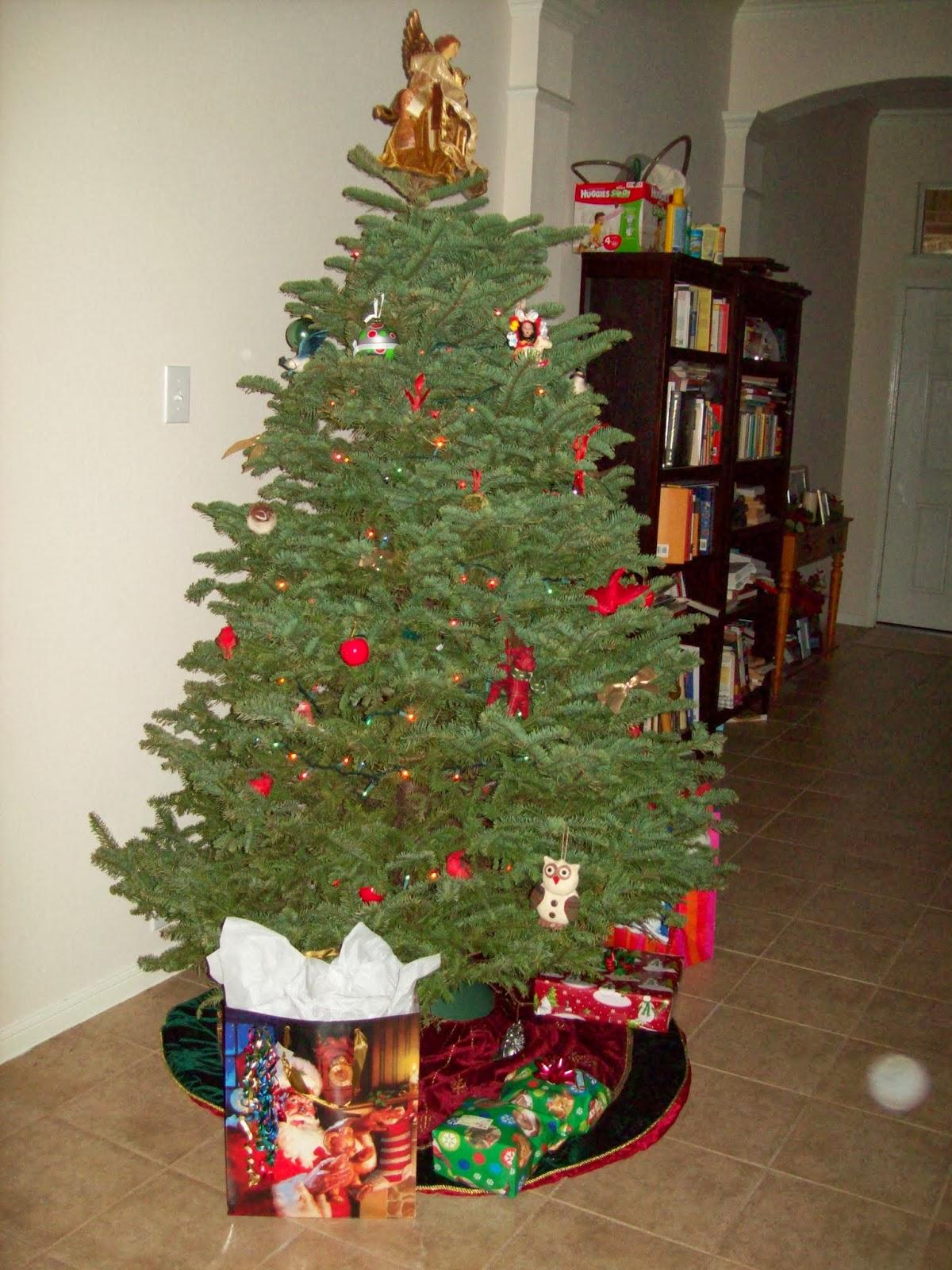 Christmas 2013 - 114_6779.JPG
