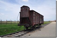 10 Birkenau wagon