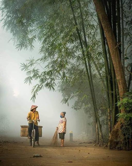 Kehidupan Di Kampung Indah Tanpa Gadget Pemandangan Desa Indonesia Ngobrol di Bawah Pohon Bambu