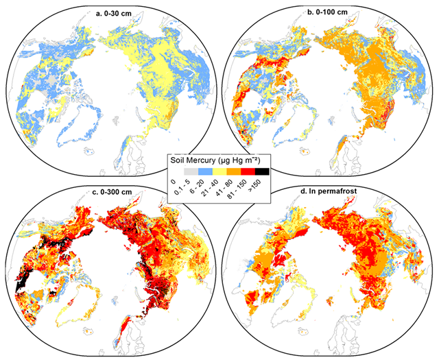 Maps of Hg (μg Hg m−2) in Northern Hemisphere permafrost zones for four soil layers: 0–30 cm, 0–100 cm, 0–300 cm, and permafrost derived by multiplying maps of carbon from Hugelius, Tarnocai, et al. (2013) and Hugelius et al. (2014) by the median RHgC. The permafrost map represents the Hg bound to frozen organic matter below the ALD and above 300 cm depth. The relative uncertainty is 57% for all pixels. Graphic: Schuster, et al., 2018 / Geophysical Research Letters