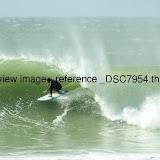 _DSC7954.thumb.jpg