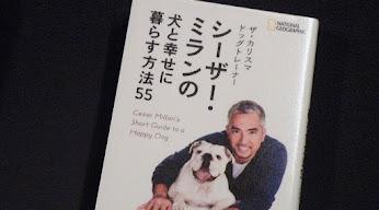 シーザー・ミランの犬と幸せに暮らす方法55