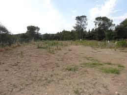 TISSEMSILT : Où en est l'opération lots de terrains à usage d'habitation ?