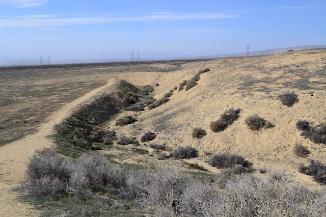 offset in Wallace Creek formed by the San Andreas Fault shifting