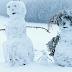 النمسا : سقوط طفل ذو4 سنوات من النافذة الثلج ينقذ حياته