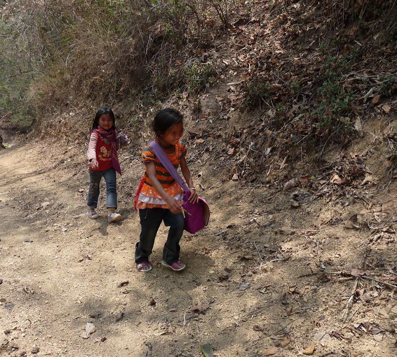Chine: randonnée xishangbanna, région de Bada - Picture1%2B1023.jpg
