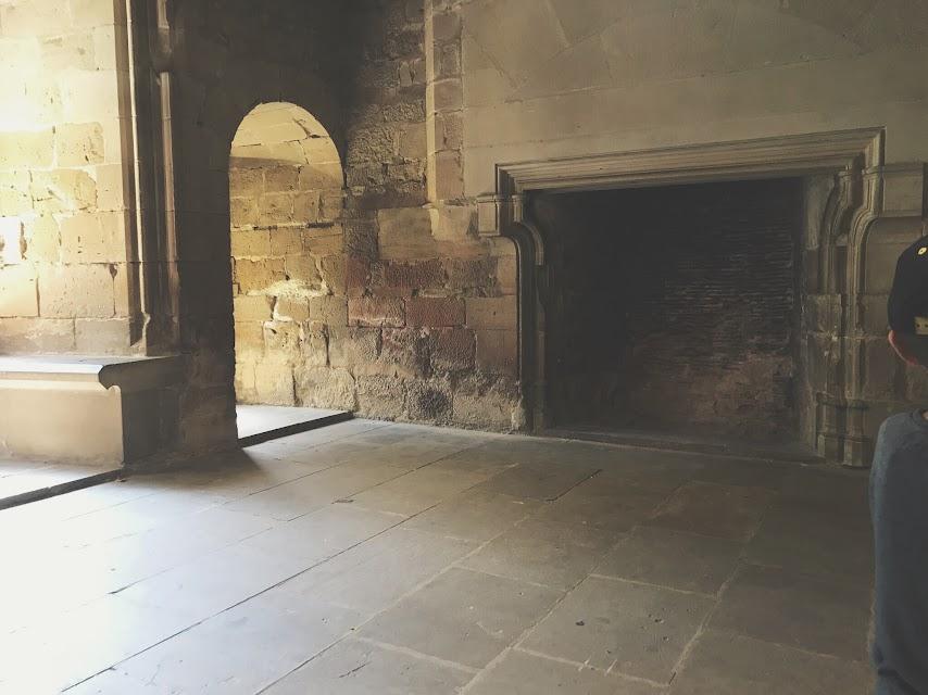 Salas con chimeneas en el Palacio Real de Olite