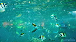 ngebolang-pulau-harapan-30-31-03-2014-pen-008