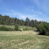 Sortida Reforestació 2007 - PICT1531.JPG