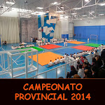 CAMPEONATO PROVINCIAL 2014