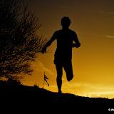Bunny Run 3 2013