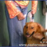 2005Busturia064.jpg