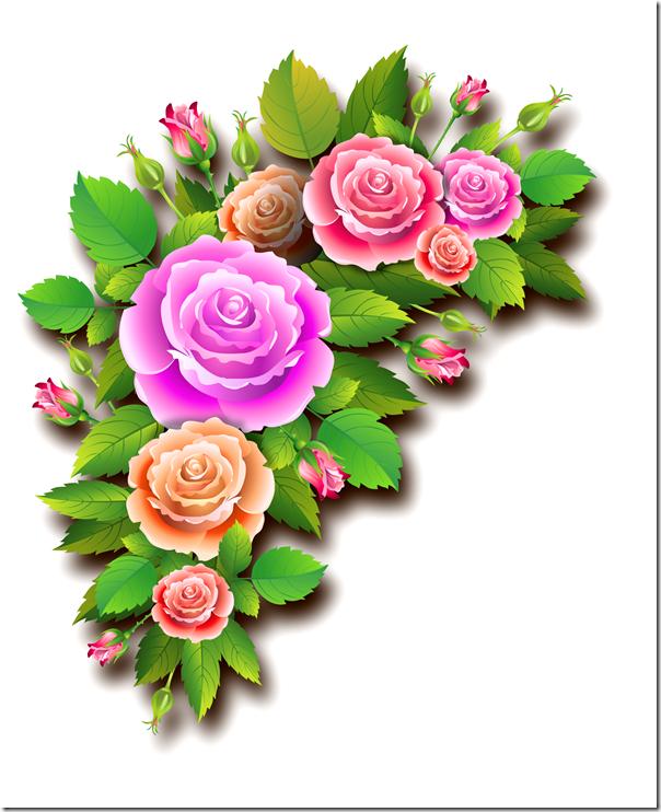 roses_13072017_a1_aalmeidah