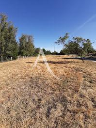 terrain à Monthodon (37)