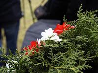 14 - Az emlékezés virágai.JPG