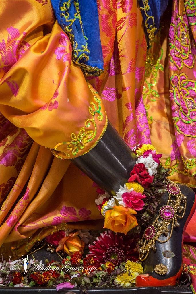 ISKCON Mayapur Deity Darshan 20 Jan 2017 (9)