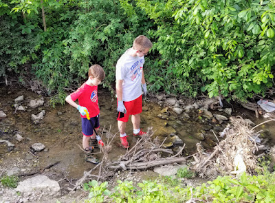 Boy Scout Troop 392 cleaning Brown Run in Grove City