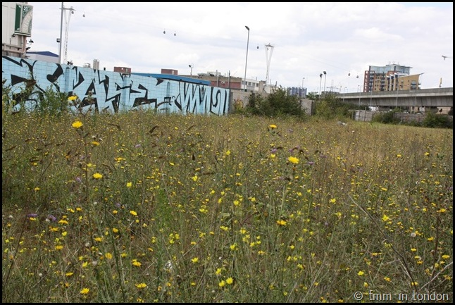 Derelict London Silvertown - Abandoned Lot Next to Tate and Lyle