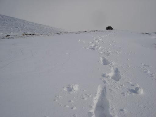 Schnee auf dem Nordkalottleden
