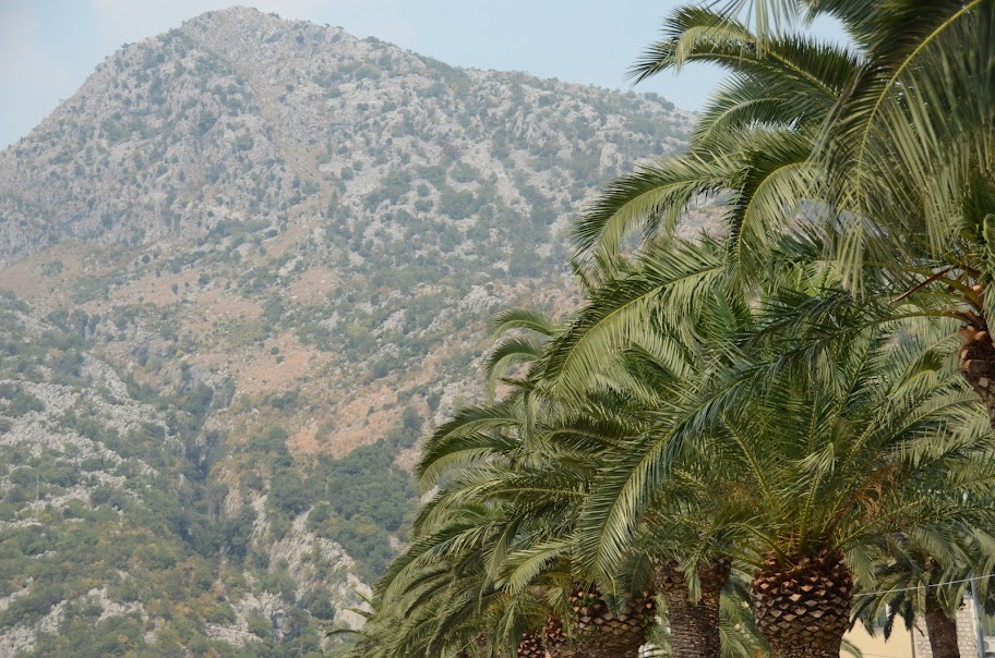 montenegro - Montenegro_38.jpg