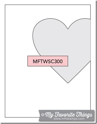 MFT_WSC_300