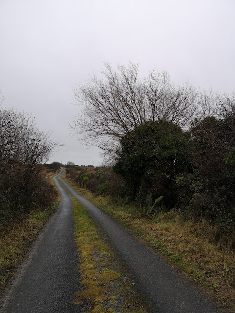 long and winding countryside road through the Connemara bogs