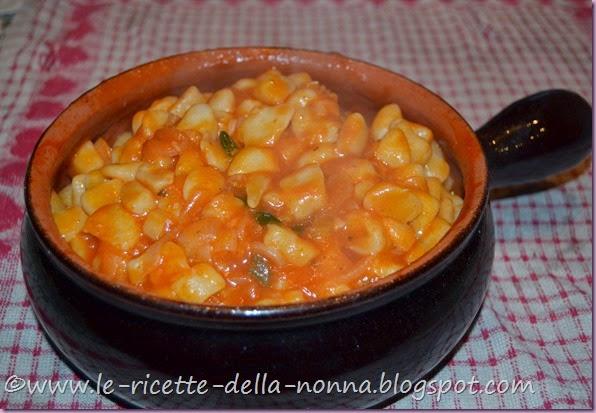 Chicche di ricotta con salsa di pomodoro e basilico (9)