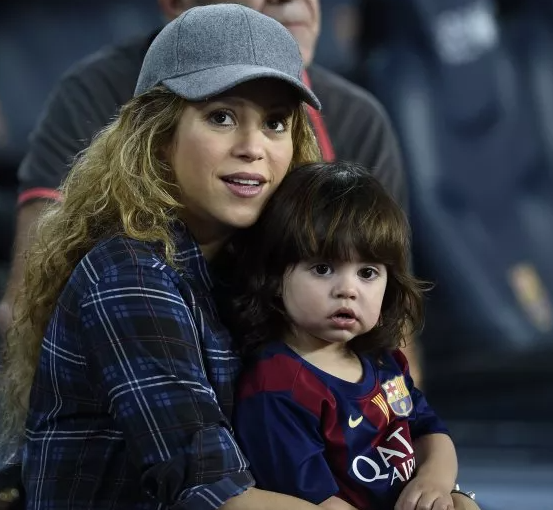 Singer, Shakira attacked by wild boars while in park with her son
