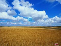 VirtualBox_Windows XP test_07_04_2017_16_52_38