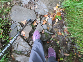 pink shoes and trekking pole