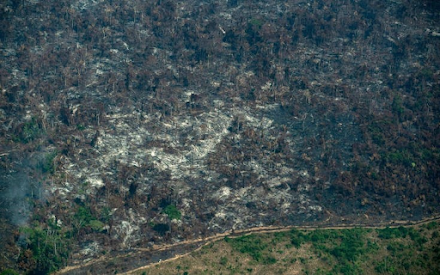 Πώς έπαψε ο Αμαζόνιος να είναι ο πνεύμονας της Γης